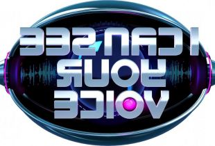 'I Can See Your Voice' (RTL 4)